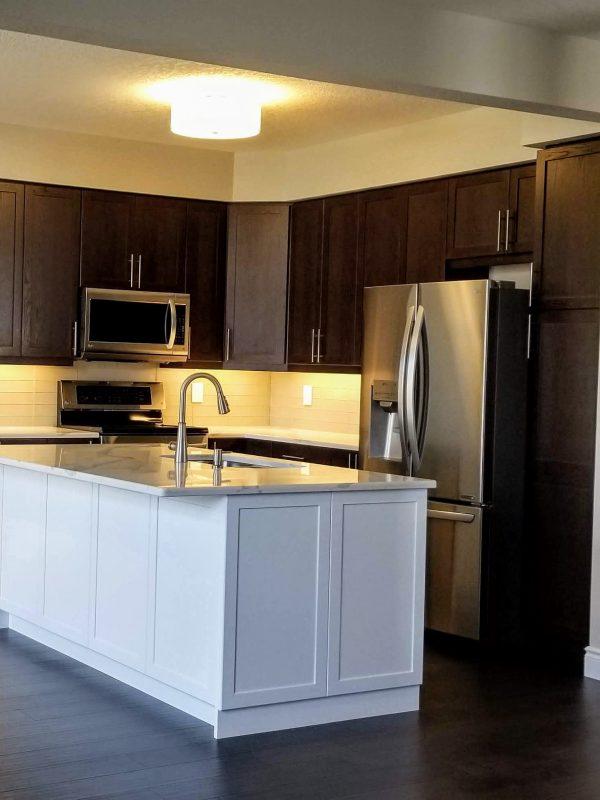 Kitchen renovation featuring quartz countertops