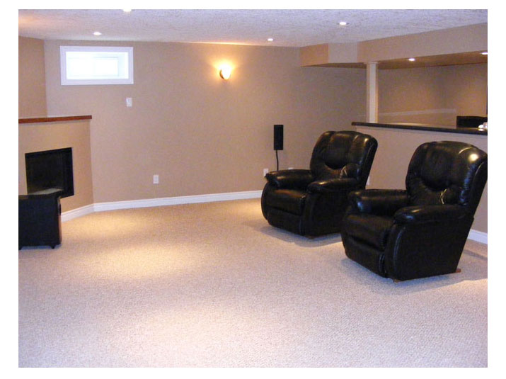 Basement living room