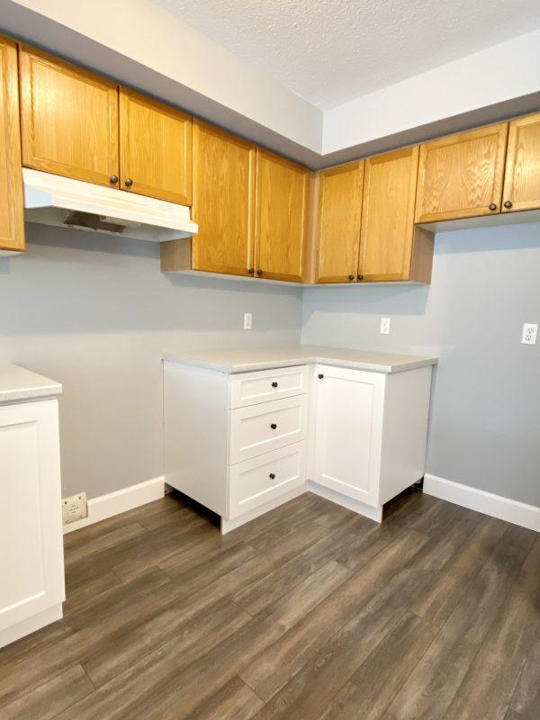 White shaker style base cabinets